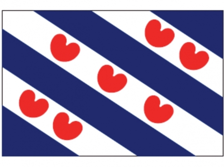 Friese vlag 50x75